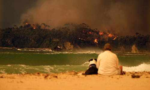 Man and dog on the beach during Malua Bay Bushfire NSW, Australia, January 2020 © Alex Coppel / Newspix