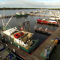 Fishing port / marina at Lakes Entrance, Victoria © WWF-Aus / Stepping Stone Films