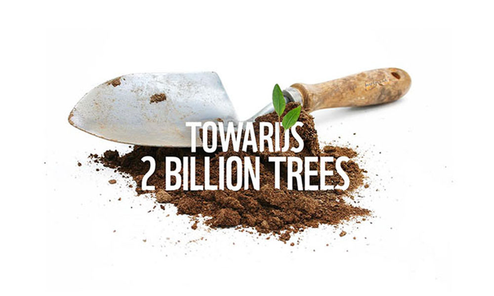 Towards 2 Billion trees