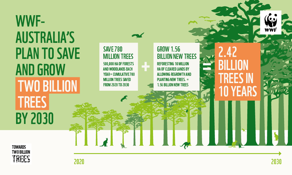 Towards two billion trees infographic