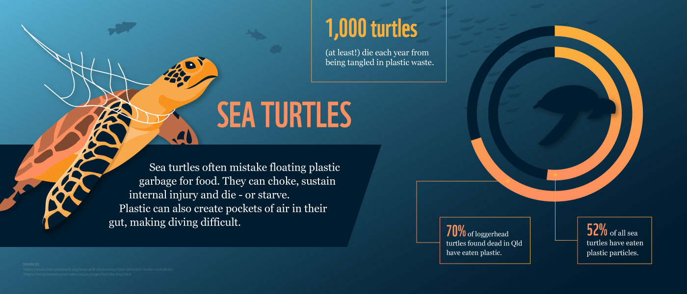 Plastic pollution is killing sea turtles: Here's how – WWF