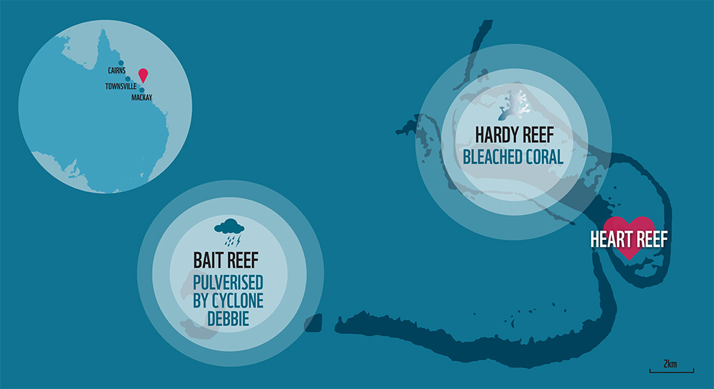 Graph showing the location of the Heart Reef and where the bleaching has occurred © WWF-Australia