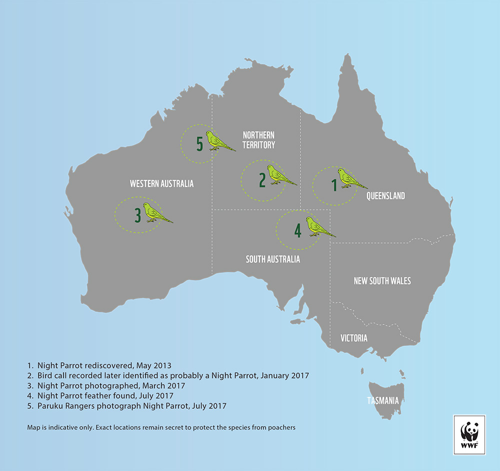 Night parrot discovery map