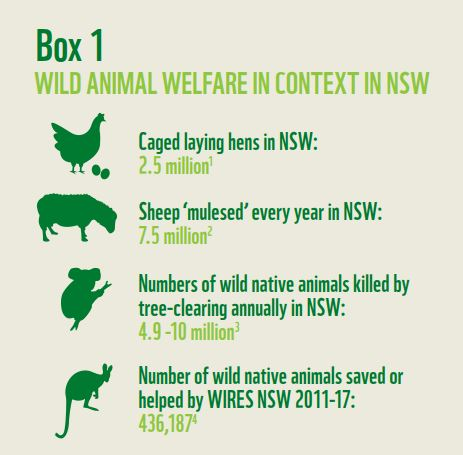 The worst animal welfare crisis that no one's heard of - WWF