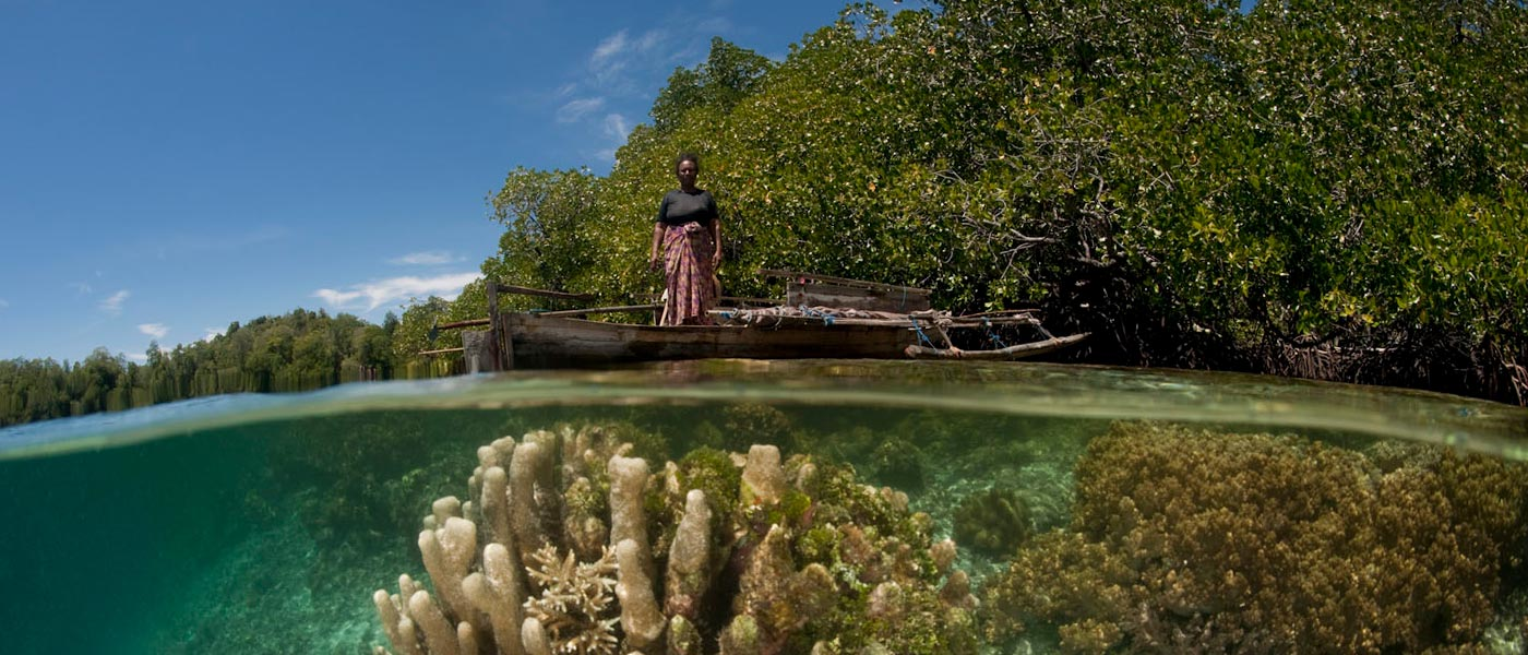 Split level of a shallow coral reef and mangroves with local West Papuan woman in her dugout canoe. West Papua, Indonesia © Jürgen Freund / WWF