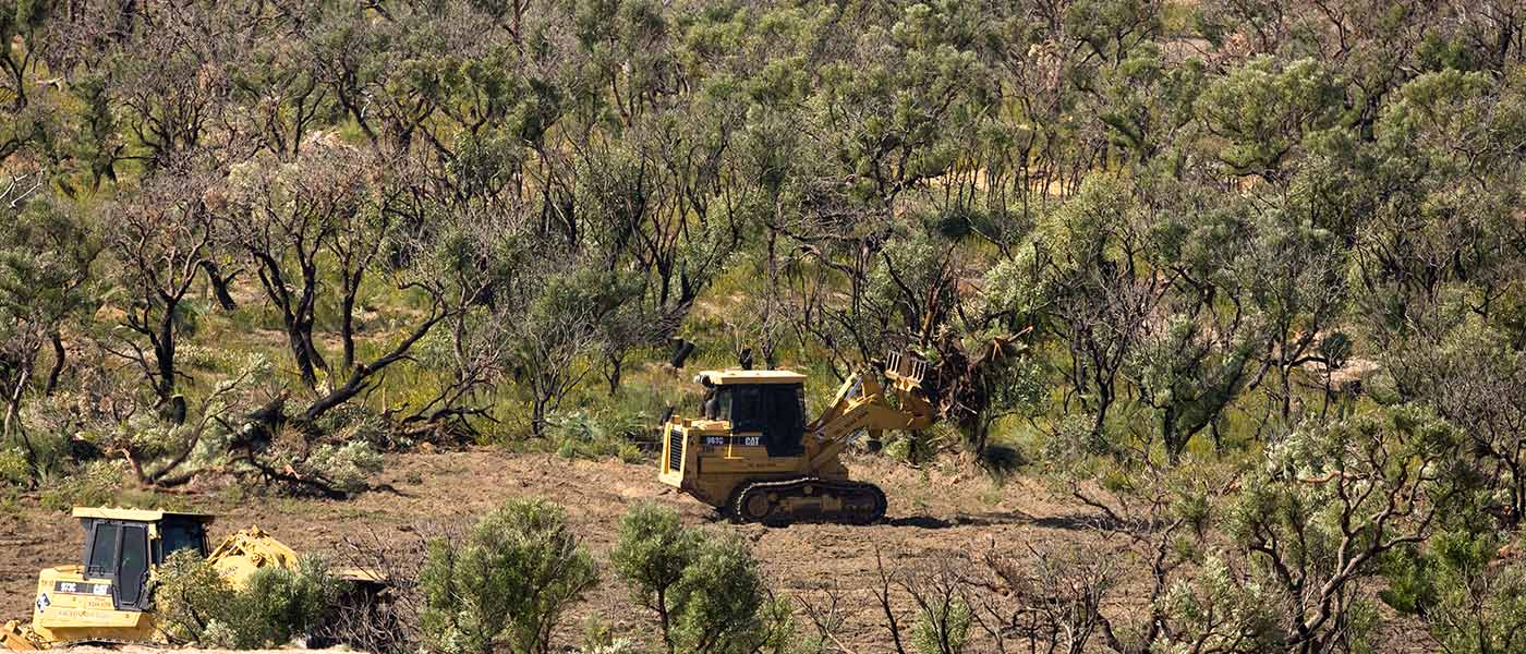 Trees being cleared near Perth, Western Australia