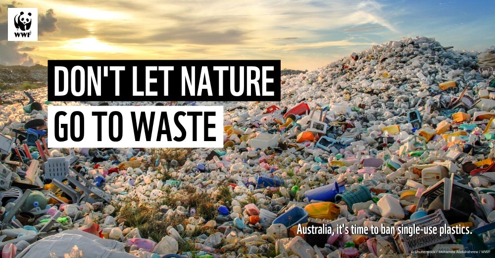 Don't Let Nature Go To Waste