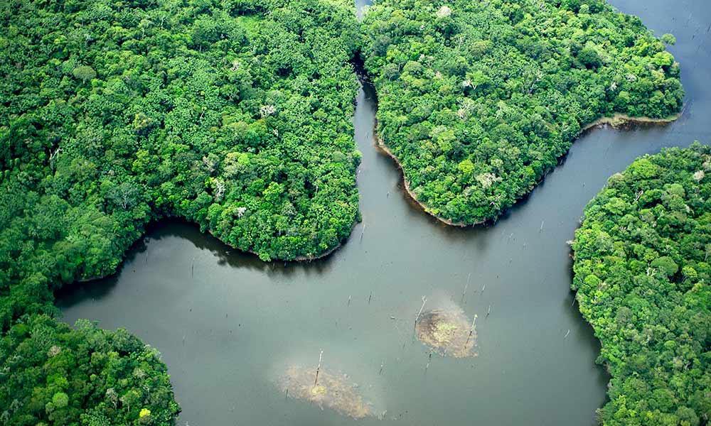 Aerial view of the Uatumã Biological Reserve, Amazon, Brazil © WWF-US / Ricardo  Lisboa