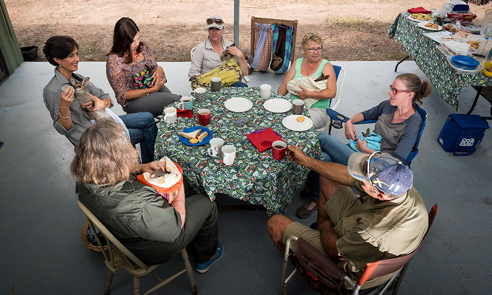 Wildlife carers gathering for rescued animals afternoon feed. Toowoomba, southeast Queensland © Doug Gimesy / WWF-Aus