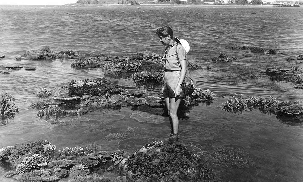 Karen Middleton (nee Holst) viewing coral on what was locally known as