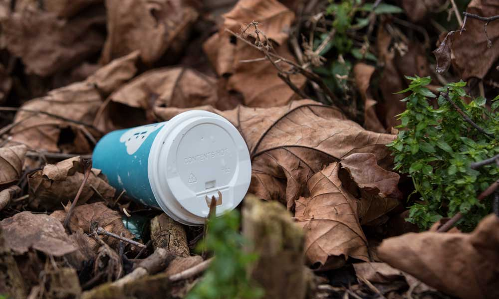 Discarded disposable coffee cups litter the streets © Elizabeth Dalziel / WWF-UK