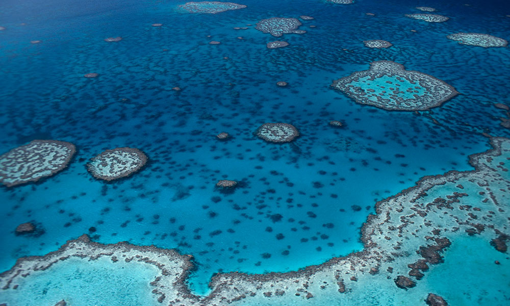 Hardy Reef, aerial view. Great Barrier Reef © Jürgen Freund / WWF