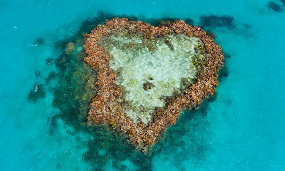 Aerial view of Hardy Reef taken on 20 June 2017 to assess if the Heart Reef has been bleached © WWF-Aus / Christian Miller