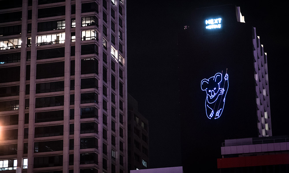 Koala projection, Brisbane CBD, November 2017 © WWF-Australia