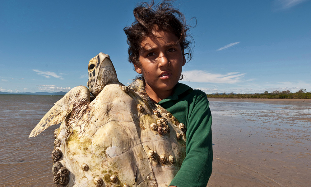 Lacie Hansen, Junior Girringun Ranger holding a green turtle during a green turtle survey trip in Edgecombe Bay, Queensland, Australia, May 2011. This photo was used to feature Lacie's story in a German Magazine when she first became a Junior Ranger in 2011 © Jurgen Freund / WWF-Aus
