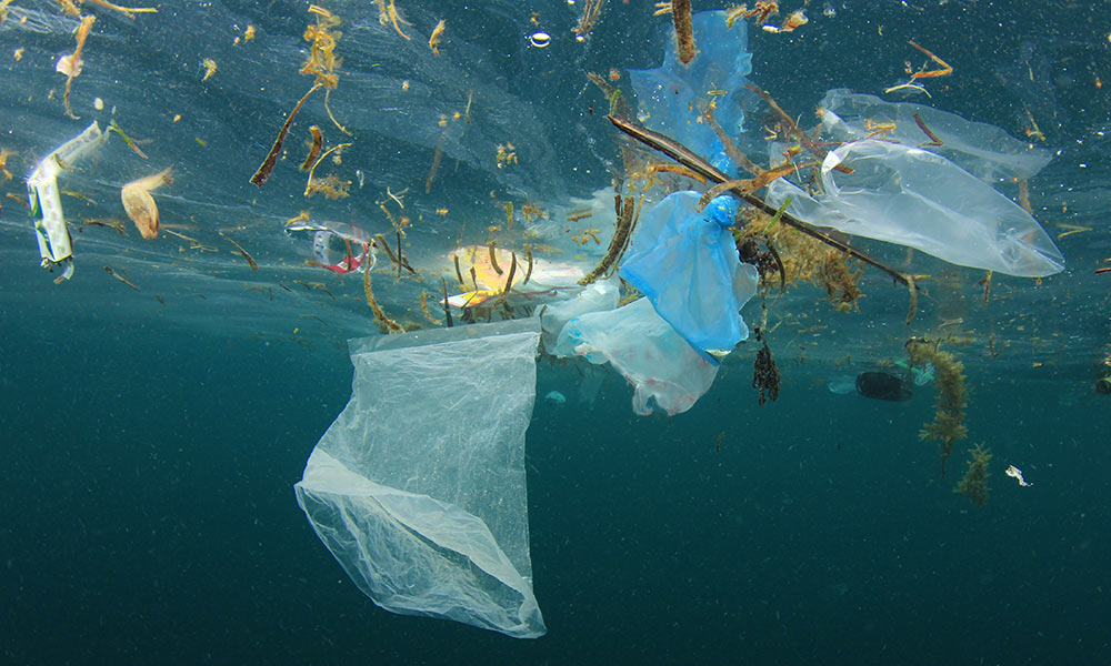 Plastic bag and rubbish floating in ocean © Shutterstock / Rich Carey / WWF