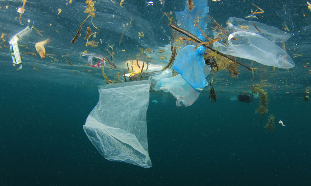 Plastic pollution - a plastic bag and rubbish float in the ocean © Shutterstock / Rich Carey / WWF