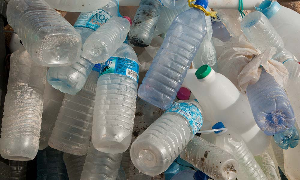 Plastic water bottles collected from a beach © Peter Chadwick / WWF