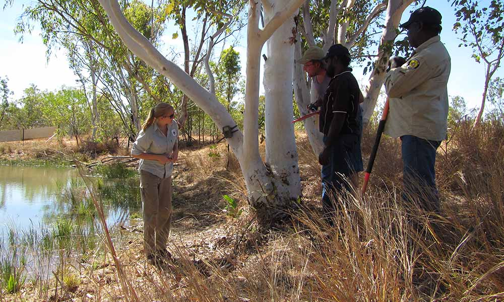 Training Wungurr Rangers, Gibb River station, Central Kimberley © Jess Koleck / Wilinggin Aboriginal Corporation / WWF-Aus
