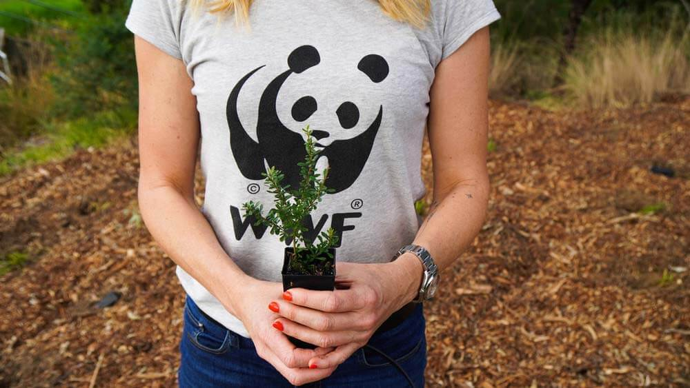 Community Tree Planting at Cook Reserve Ruse, Campelltown © WWF-Aus / Leonie Sii
