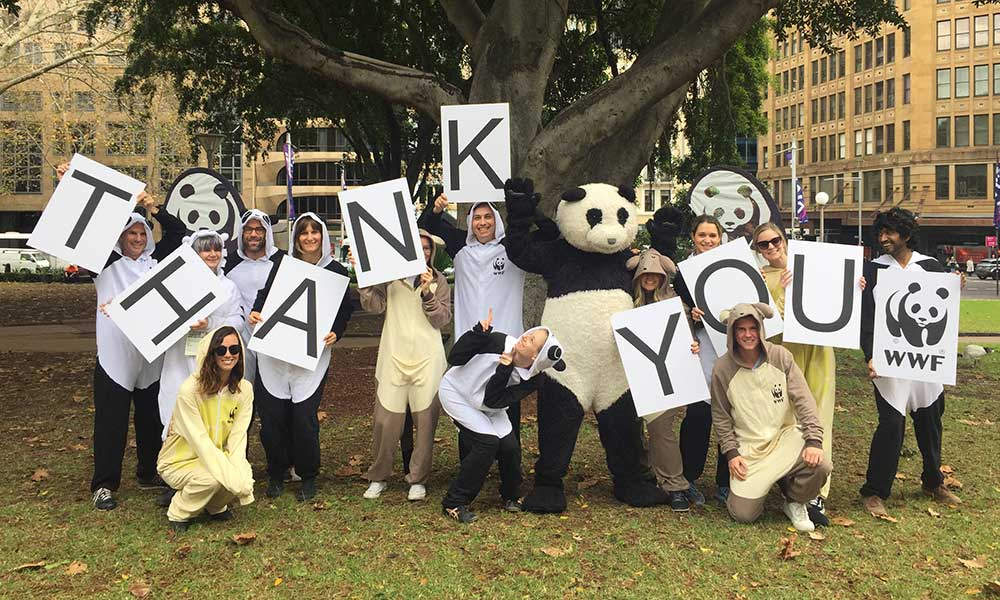 Staff and volunteers hold thank you signs, Wild Onesie Week 2016: Yoga class. Hyde Park, Sydney © WWF-Aus / Christina Palmer