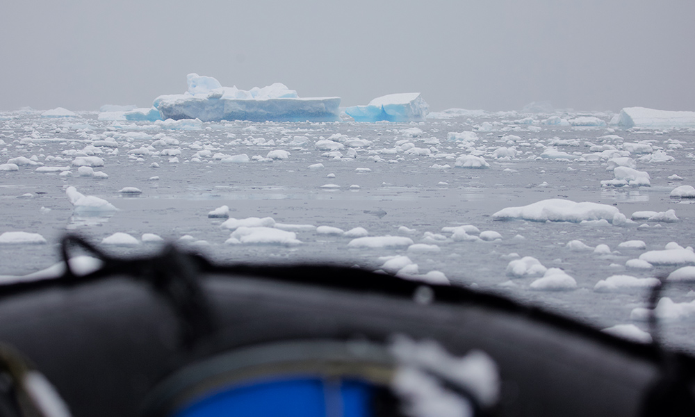 View from the zodiac searching for whales, Antarctic Peninsula © WWF-Aus / Chris Johnson