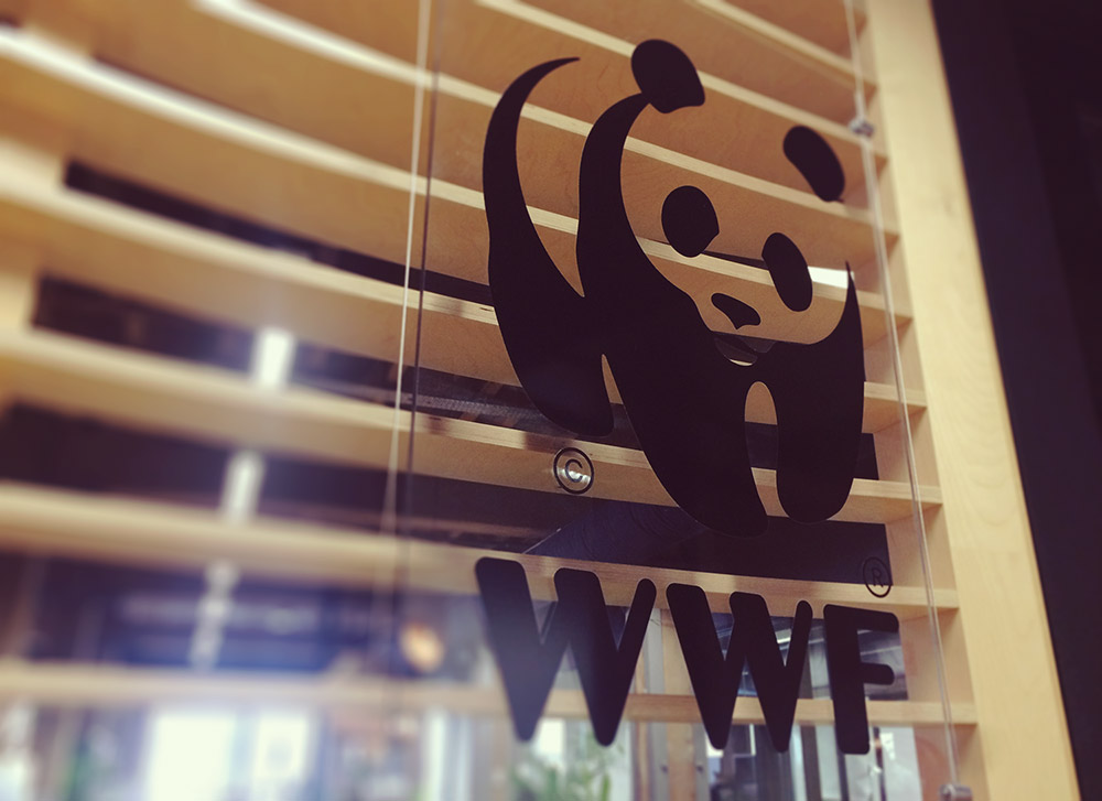 WWF Sydney office, panda HQ © WWF-Aus / Olly Freeman