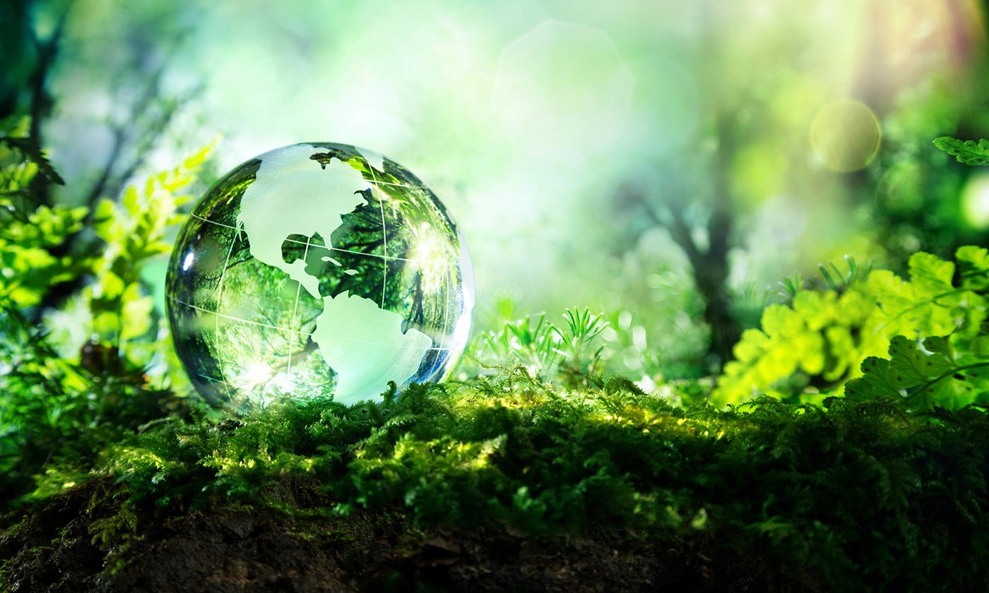 Crystal globe resting on moss in a forest - environment concept © Shutterstock / Romolo Tavani / WWF