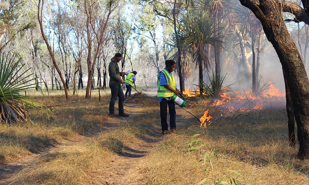 Bardi Jawi Oorany Rangers conduct cool burning to reduce the impact of late-season wildfires © Kimberley Land Council