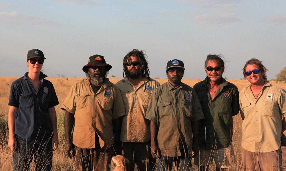 The team that discovered the night parrot, including Indigenous Protected Area Coordinator Erin Flynn, Traditional Owner Hanson Pye, Paruku Ranger Coordinator Jamie Brown, Paruku Ranger Lachlan Johns, Neil Hamaguchi, Environs Kimberley, and Alexander Watson, WWF-Australia © Kimberley Land Council