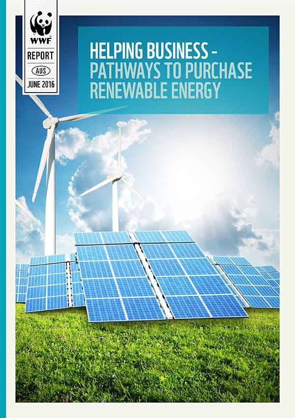 Helping business pathways to purchase renewable energy